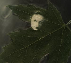 about face leaf copy 2